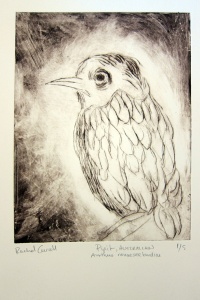 Pipet Dry Point 2012