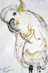 Cockatoo Lucy, Mixed Media, Rachel Carroll SOLD
