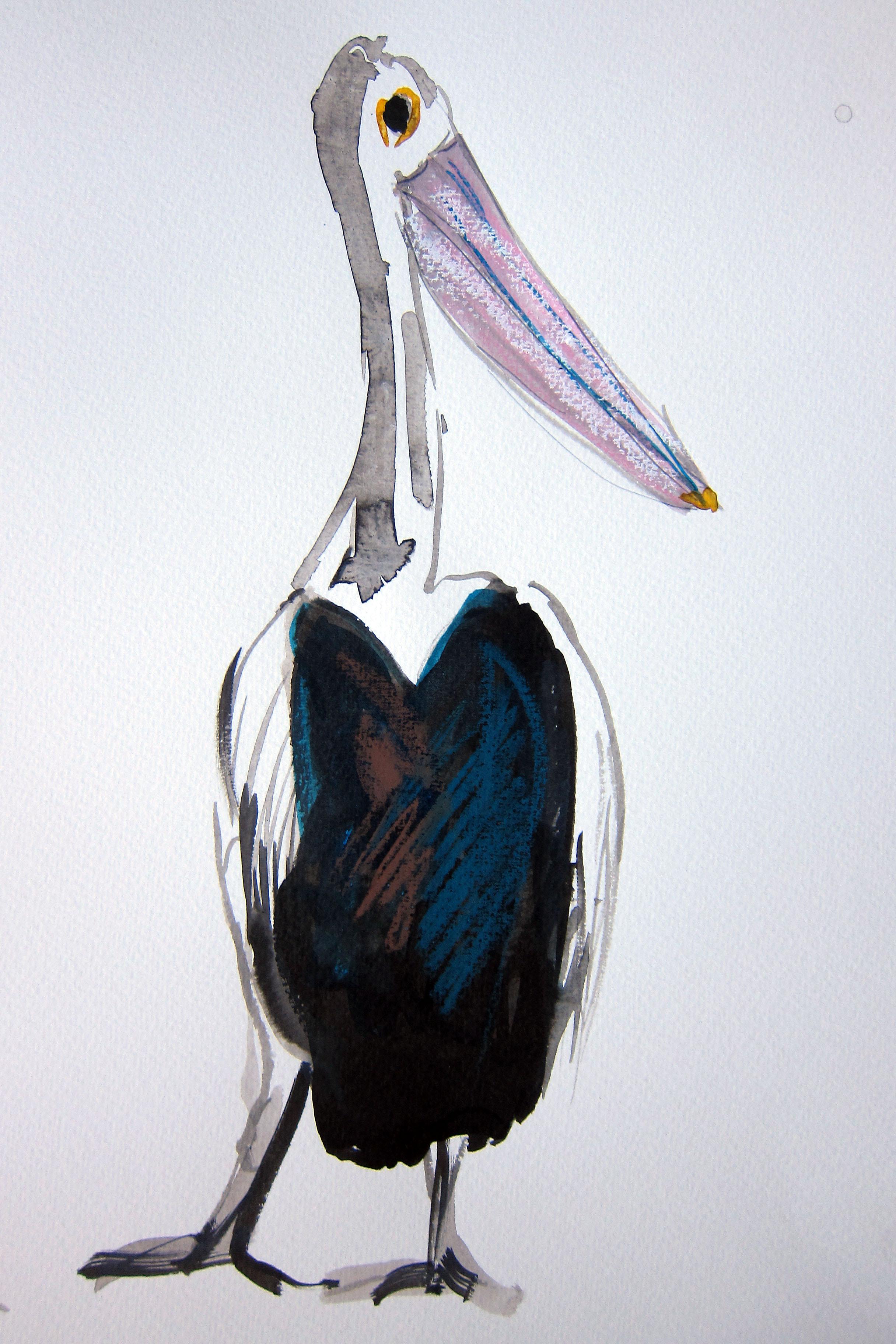 Pelican Pat GOOD