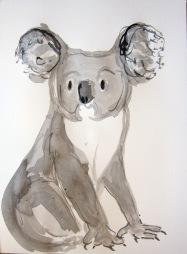 Koala Tim LG