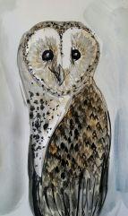 Owl Barn Owl